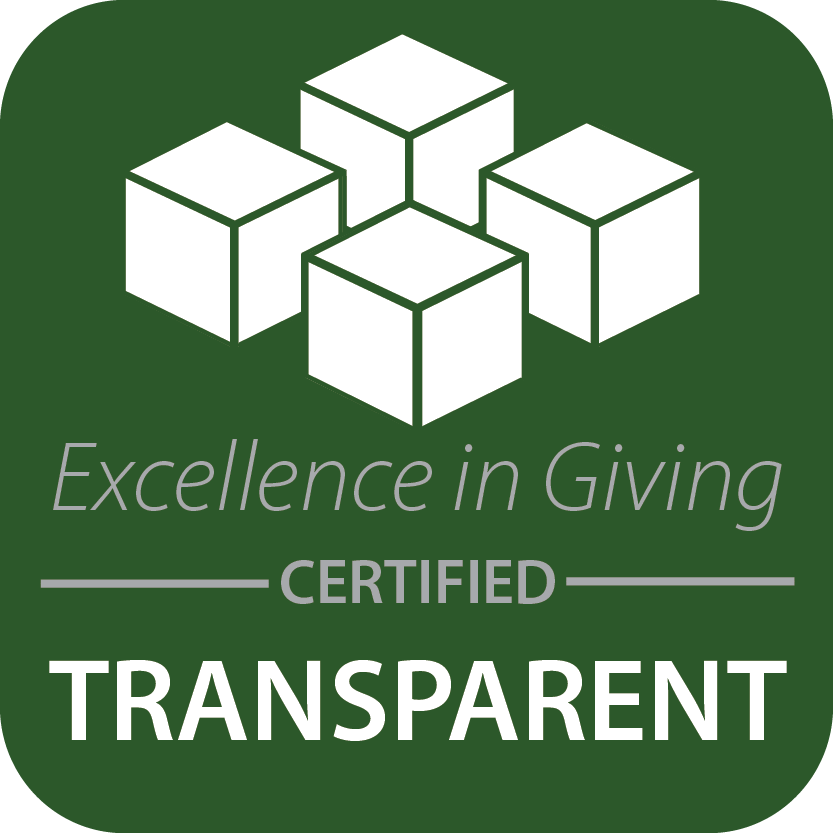 Excellence in giving logo